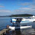 Het vervoer naar Lake Goodnews