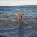 Marius in de golven